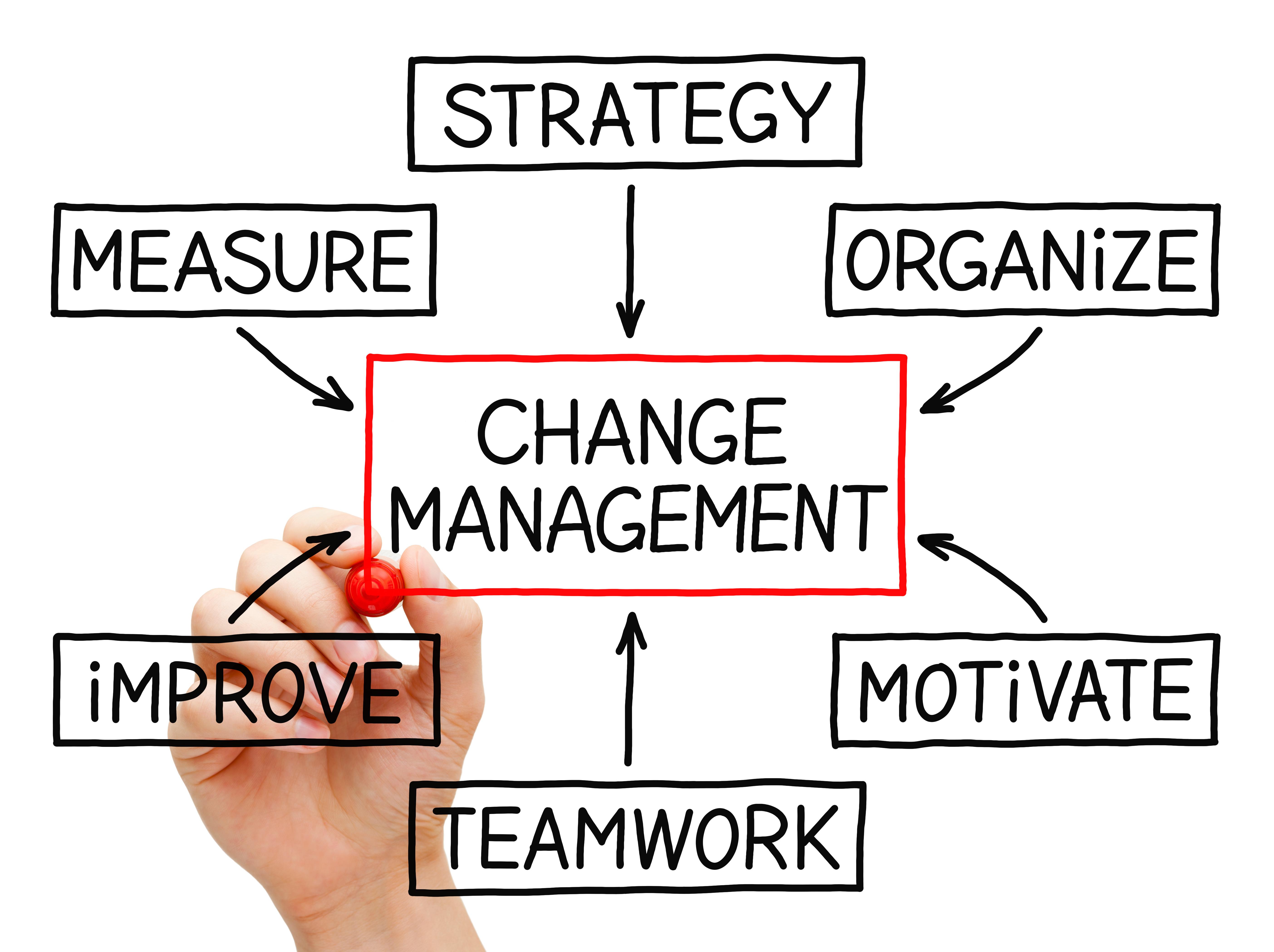 Management en entreprise