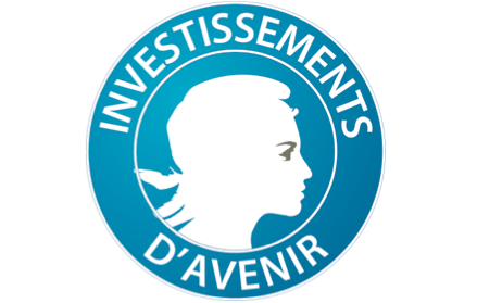 Logo programme d'investissement d'avenir